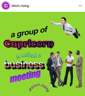 a group of capricorn