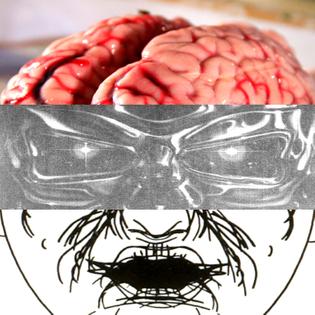 amnesia-scanner__0494__lede.jpg