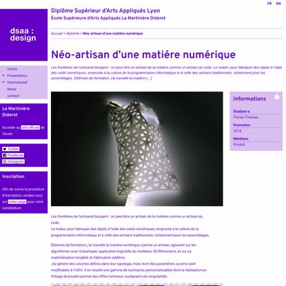 Néo-artisan d'une matiére numérique   Diplôme Supérieur d'Arts Appliqués Lyon