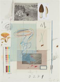 Cy Twombly, Natural History Part I Mushrooms: No. VII (1974)