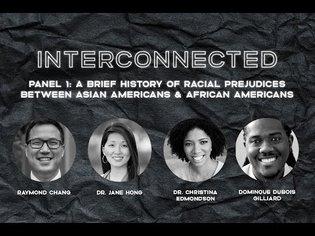 Interconnected Part 1: Confronting Racial Prejudices between Asian American & Black Communities