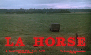 horse-blu-ray-movie-title.jpg