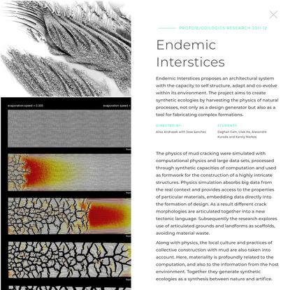 Endemic Interstices by Alisa Andrasek