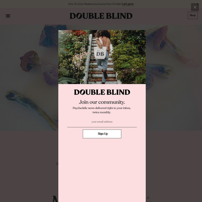 Shrooms vs. Acid   DoubleBlind