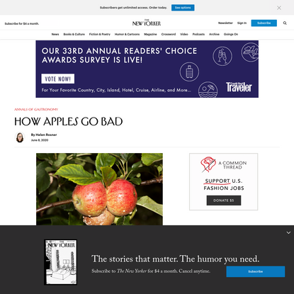 How Apples Go Bad | The New Yorker