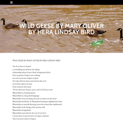 WILD GEESE BY MARY OLIVER BY HERA LINDSAY BIRD