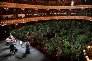 200623123148-01-barcelona-opera-plants.jpg