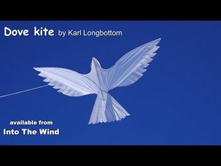 Dove Kite by Karl Longbottom, available from Into The Wind