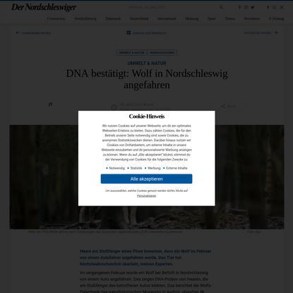 DNA bestätigt: Wolf in Nordschleswig angefahren