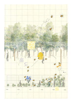 CONNECTING WITH THE BEES - Harriet Greenslade