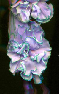 fromktoj-scan021.jpg