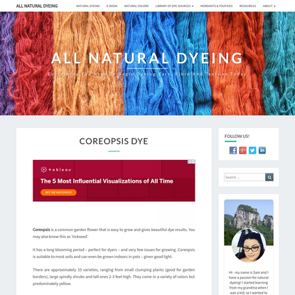Coreopsis Dye - All Natural Dyeing