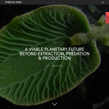 A Viable Planetary Future Beyond Extraction, Predation & Production