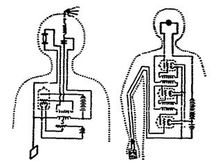Biological Radio Communications, B. B. Kazhinskiy,
