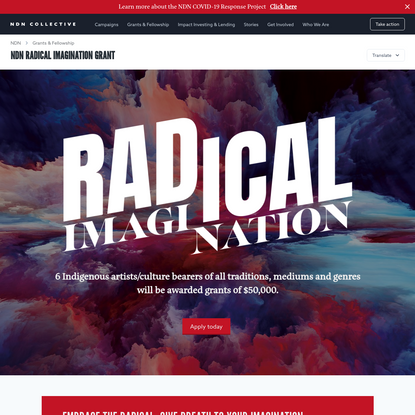 NDN Radical Imagination Grant