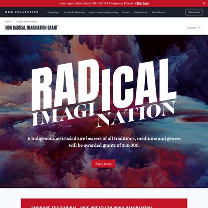 NDN Radical Imagination Grant