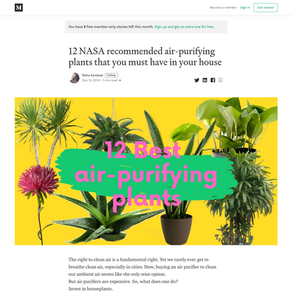 12 NASA recommended air-purifying plants that you must have in your house
