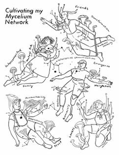 mycelium-network.jpg