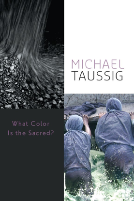 michael-taussig-what-color-is-the-sacred_-university-of-chicago-press-2009-.pdf