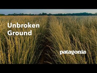 Unbroken Ground   A New Old Way to Grow Food