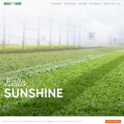 BrightFarms | Fresh Baby Greens Grown for Locals