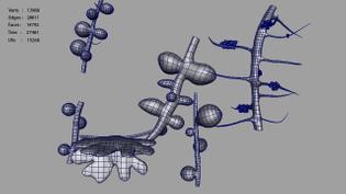 rootnodules_polycount.jpg4fee039f-ad27-4ad4-a2a6-1e32e08bf85foriginal.jpg