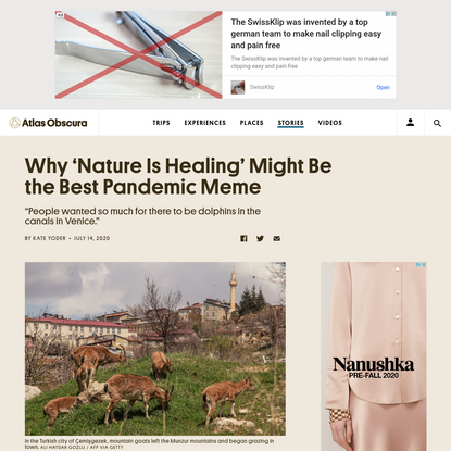 Why 'Nature Is Healing' Might Be the Best Pandemic Meme