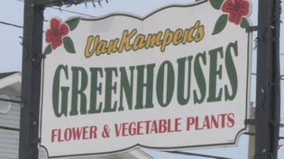 vankampen-s-greenhouses.jpg