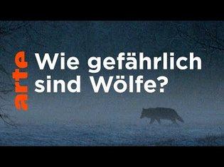 Familie Wolf - Gefährliche Nachbarn? | Doku | ARTE