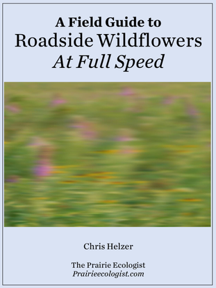 A Field Guide to Roadside Wildflowers At Full Speed, Chris Helzer