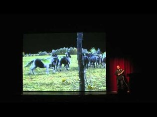 """Horse"" - performance by Archer Pechawis Winnipeg Art Gallery"
