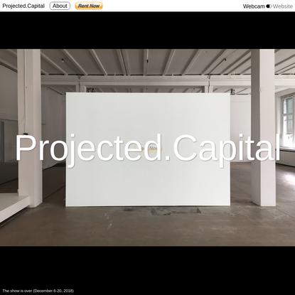 Projected.Capital, Silvio Lorusso + Sebastian Schmieg, 2018