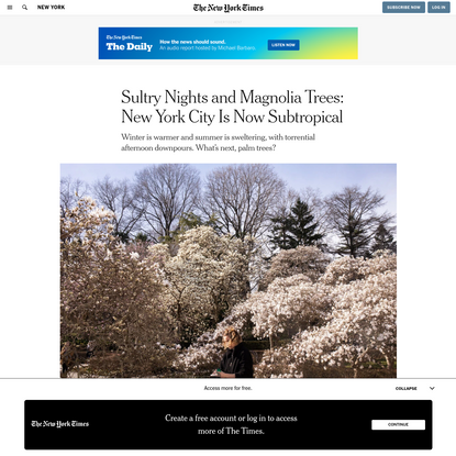 Sultry Nights and Magnolia Trees: New York City Is Now Subtropical
