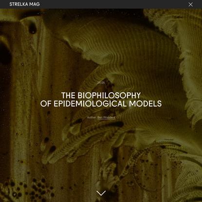 The Biophilosophy of Epidemiological Models
