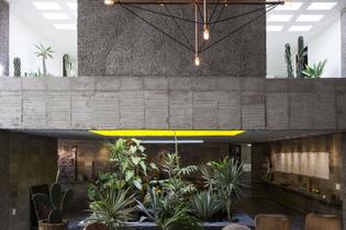freunde-von-freunde-carla-fernandez-pedro-reyes-brutalist-house-mexico-city-remodelista-5a-1466x978.jpg
