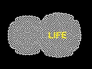 LIFE - EP1: Artificial Life