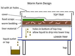 worm-farm-design.png