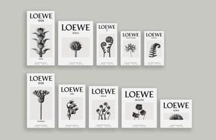 dja-loewe-2016-fragrance-001-packaging-04.jpg