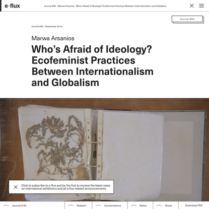 Who's Afraid of Ideology? Ecofeminist Practices Between Internationalism and Globalism