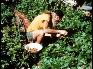 DIRT a film on NYC garden activists incl. Adam Purple