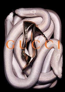 gucci-ads-pb-33.jpg?format=750w