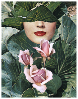 Beth Hoeckel collage