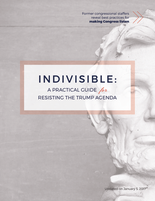 Indivisible_Guide-2.pdf