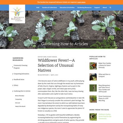 Wildflower Fever!-A Selection of Unusual Natives - Brooklyn Botanic Garden