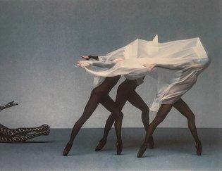 Pirelli 1988 by Barry Lategan.