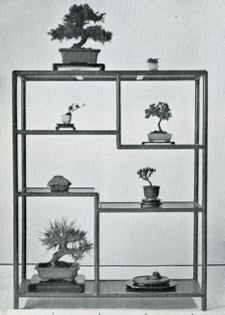 The Japanese Art of Miniature Trees and Landscapes by Yuji Yoshimura and Giovanna M. Halford, Charles E. Tuttle Co., 1957 (1976)