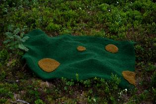 skog_teppe.jpg