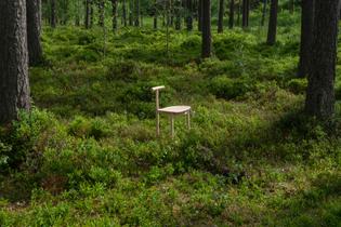 skog_stol2.jpg