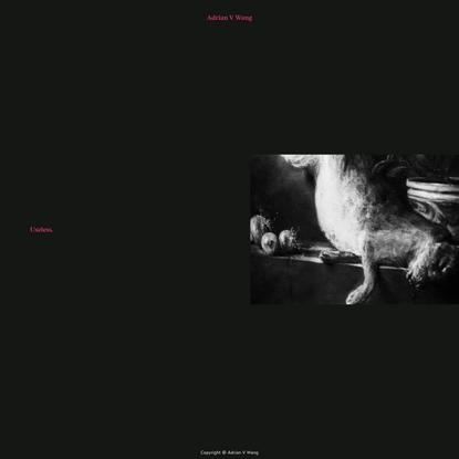 Useless - Adrian V Wang