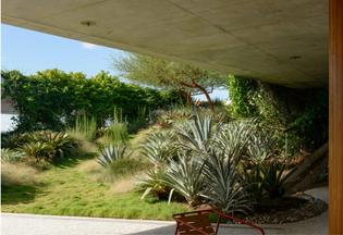 sky-garden-jungles.png
